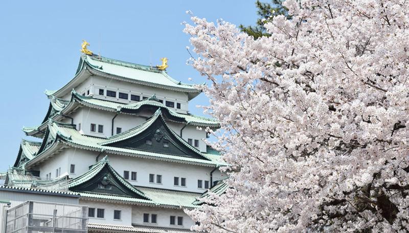愛知県名古屋市のニューハーフ求人事情